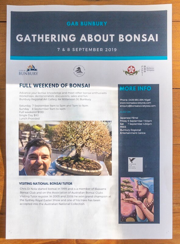 bunbury-japanese-festival-2019-bonsai